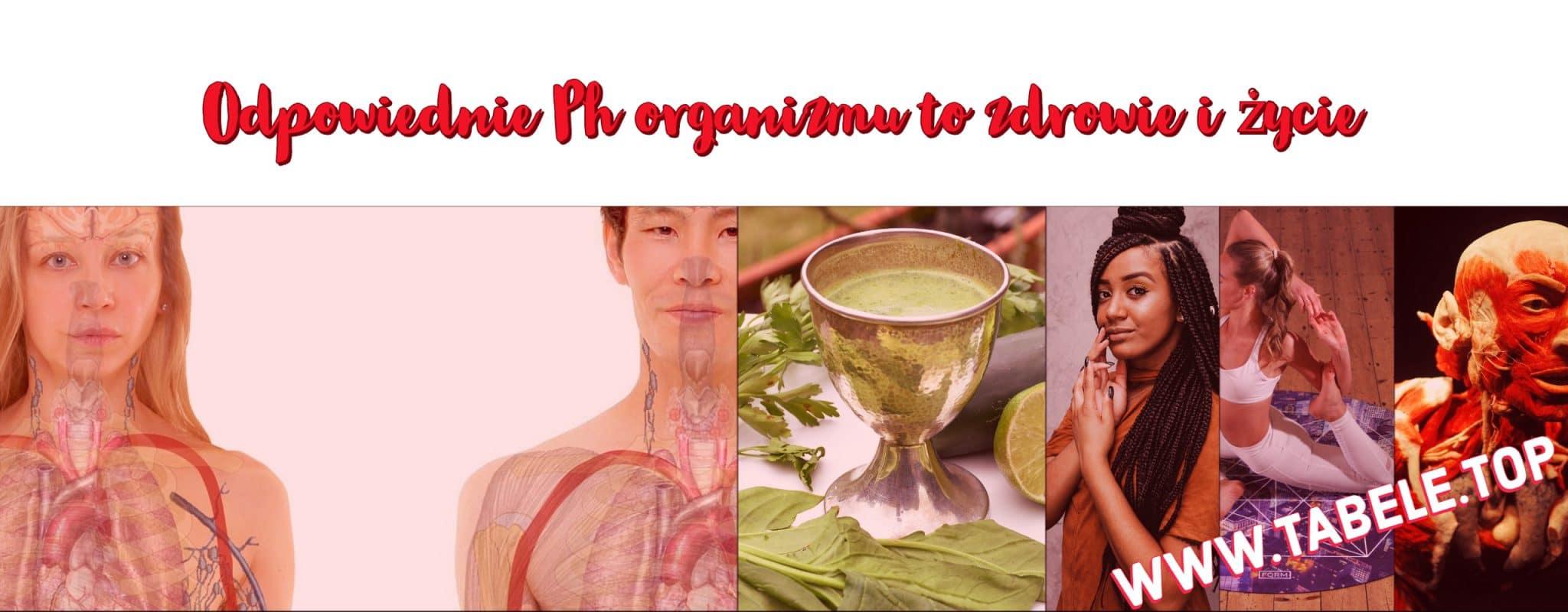 ph organizmu