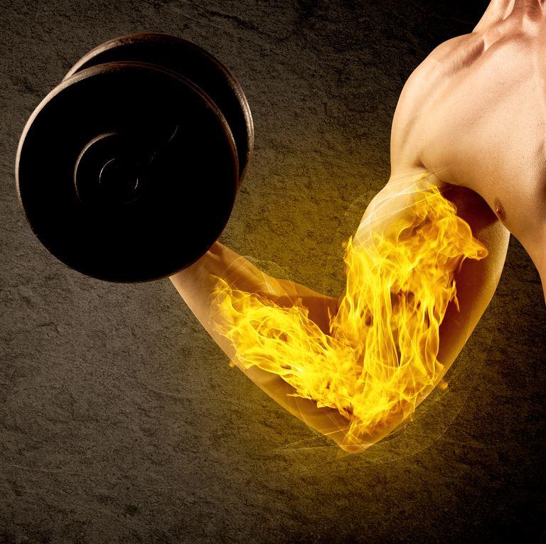mięśnie i białko