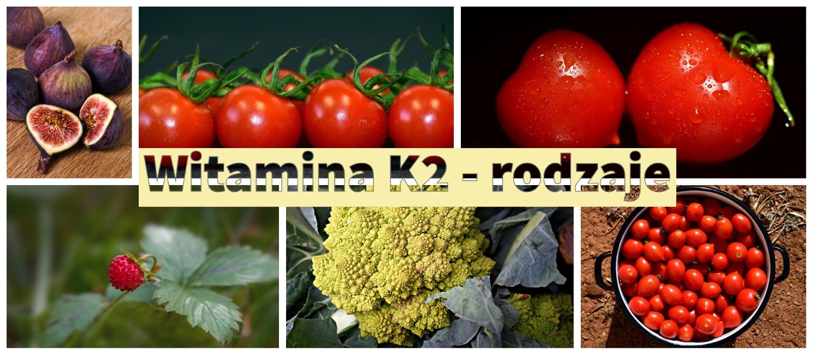 Rodzaje witamin K