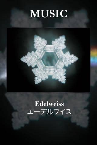 Edelweiss from The Sound of Music i struktura wody